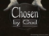 Chosen by God