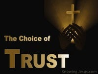 The Choice of Trust
