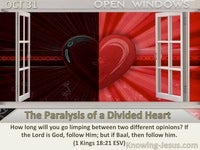 The Paralysis of a Divided Heart