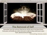 The Removal of Self