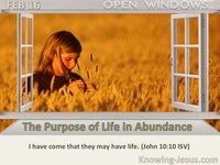 The Purpose of Life in Abundance