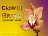 The Baby Metaphor Growing In Grace (6)