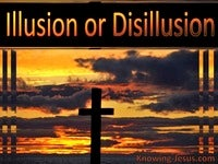 Illusion or Disillusion