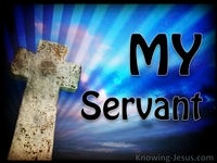 My Servant (JOB-study 8)