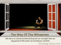 The Way Of The Winepress