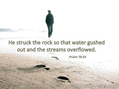 He struck the rock, so that the waters gushed   out, and the streams overflowed.