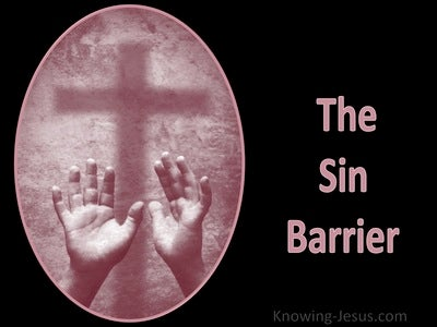 The Sin Barrier