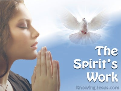 The Spirit's Work - Man's Nature and Destiny (14)